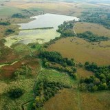 Meadowlark Lake - Grassland Enhancement Tree Removal Project